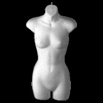 Female Torso Form